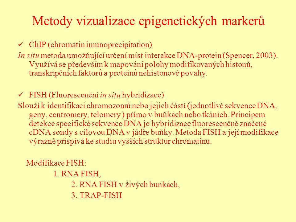 Metody vizualizace epigenetických markerů ChIP (chromatin imunoprecipitation) In situ metoda umožňující určení míst interakce DNA-protein (Spencer, 20