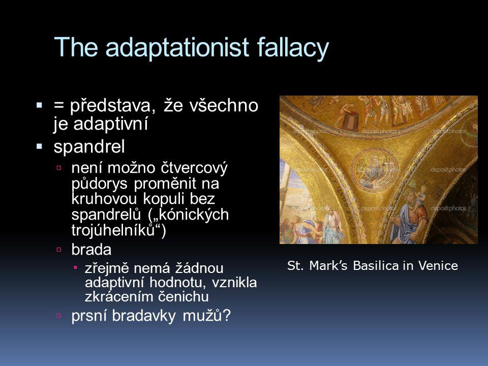 """The adaptationist fallacy  = představa, že všechno je adaptivní  spandrel  není možno čtvercový půdorys proměnit na kruhovou kopuli bez spandrelů (""""kónických trojúhelníků )  brada  zřejmě nemá žádnou adaptivní hodnotu, vznikla zkrácením čenichu  prsní bradavky mužů."""