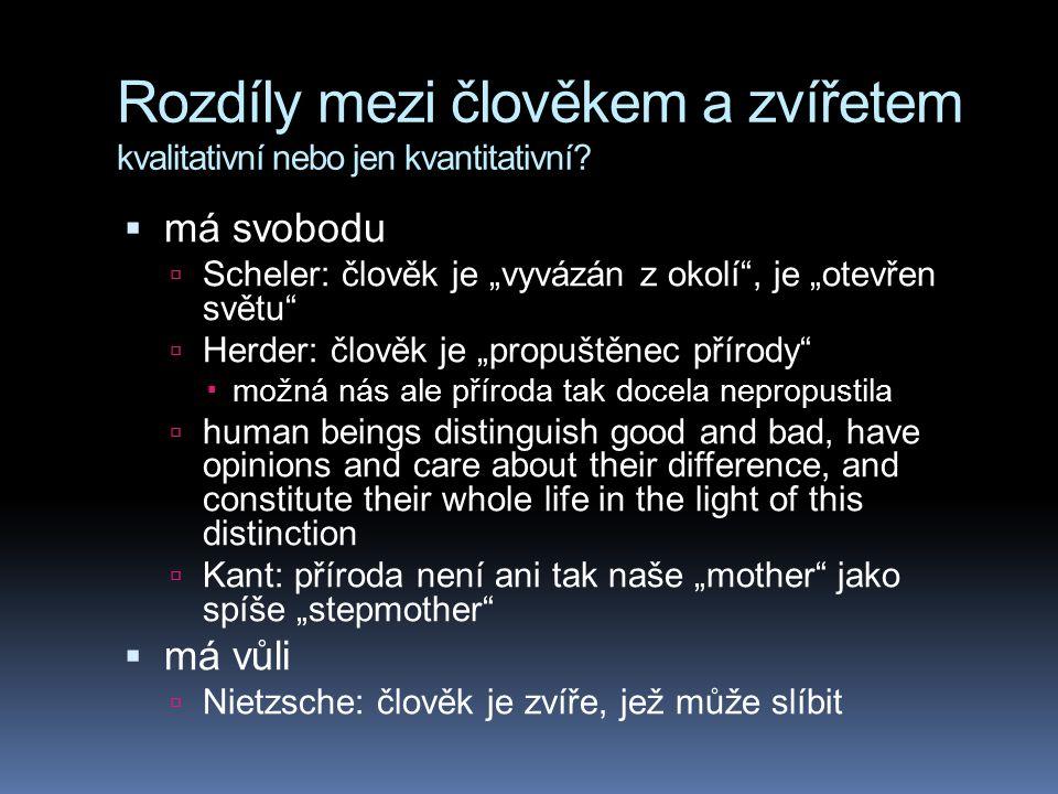 Spandrel Lechovice u Znojma