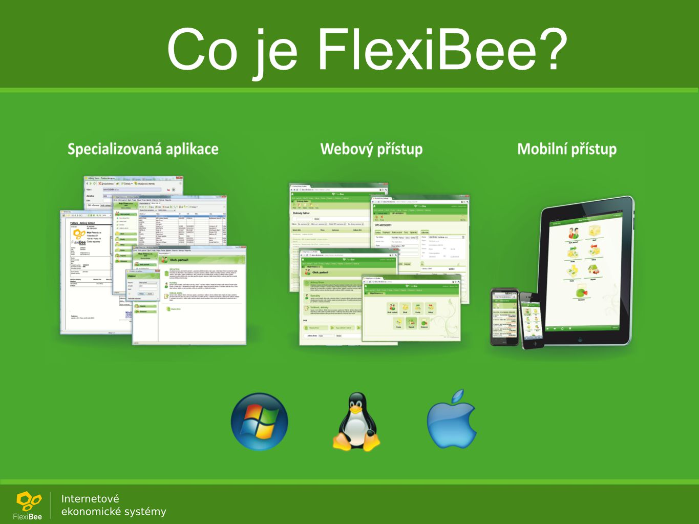 Co je FlexiBee