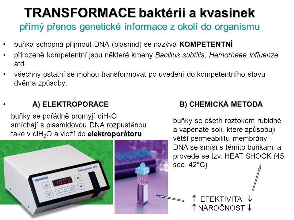 TRANSFORMACE baktérii a kvasinek přímý přenos genetické informace z okolí do organismu KOMPETENTNÍbuňka schopná přijmout DNA (plasmid) se nazývá KOMPE