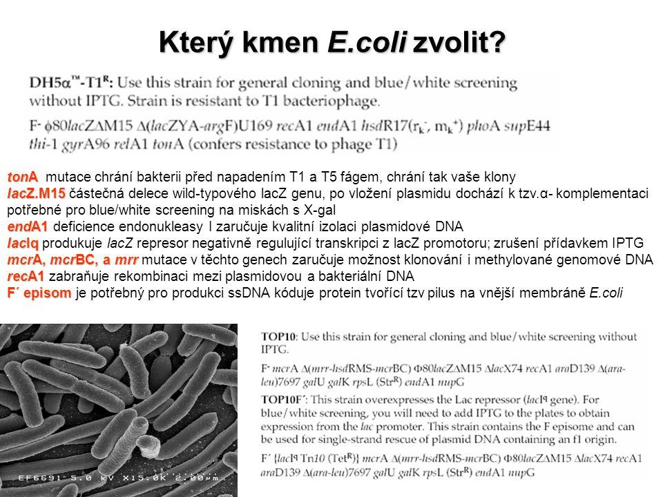 Který kmen E.coli zvolit? tonA tonA mutace chrání bakterii před napadením T1 a T5 fágem, chrání tak vaše klony lacZ.M15 lacZ.M15 částečná delece wild-
