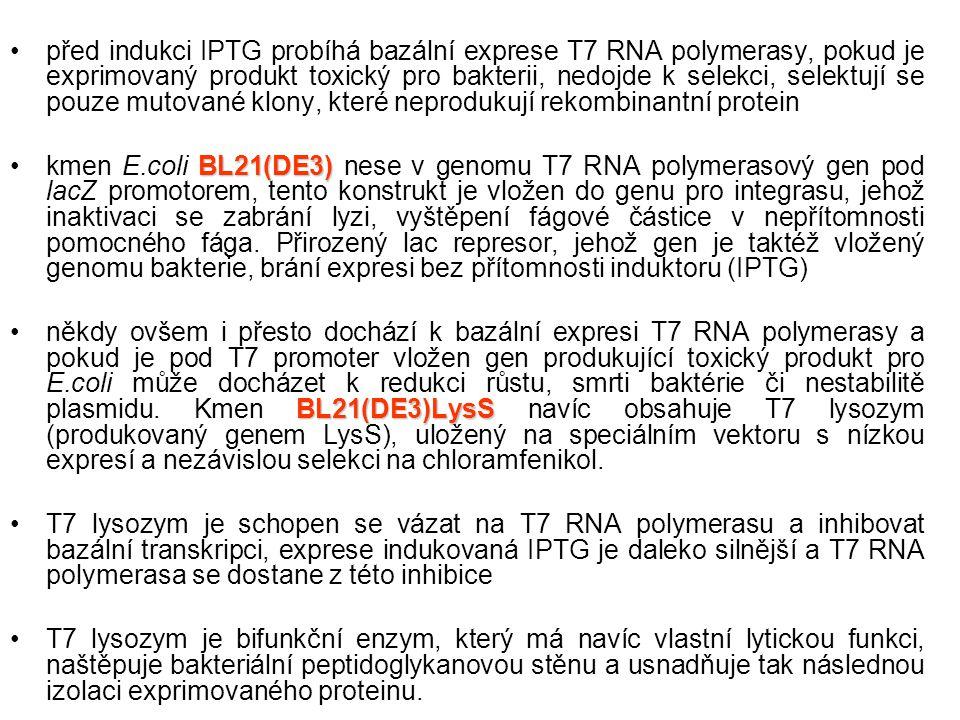 před indukci IPTG probíhá bazální exprese T7 RNA polymerasy, pokud je exprimovaný produkt toxický pro bakterii, nedojde k selekci, selektují se pouze