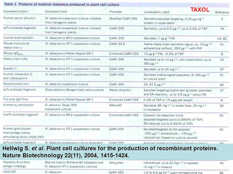 Hellwig S. et al. Plant cell cultures for the production of recombinant proteins. Nature Biotechnology 22(11), 2004, 1415-1424. TAXOL