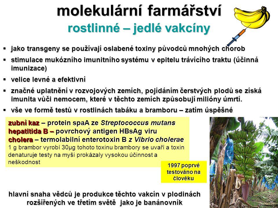 molekulární farmářství rostlinné – jedlé vakcíny  jako transgeny se používají oslabené toxiny původců mnohých chorob  stimulace mukózního imunitního