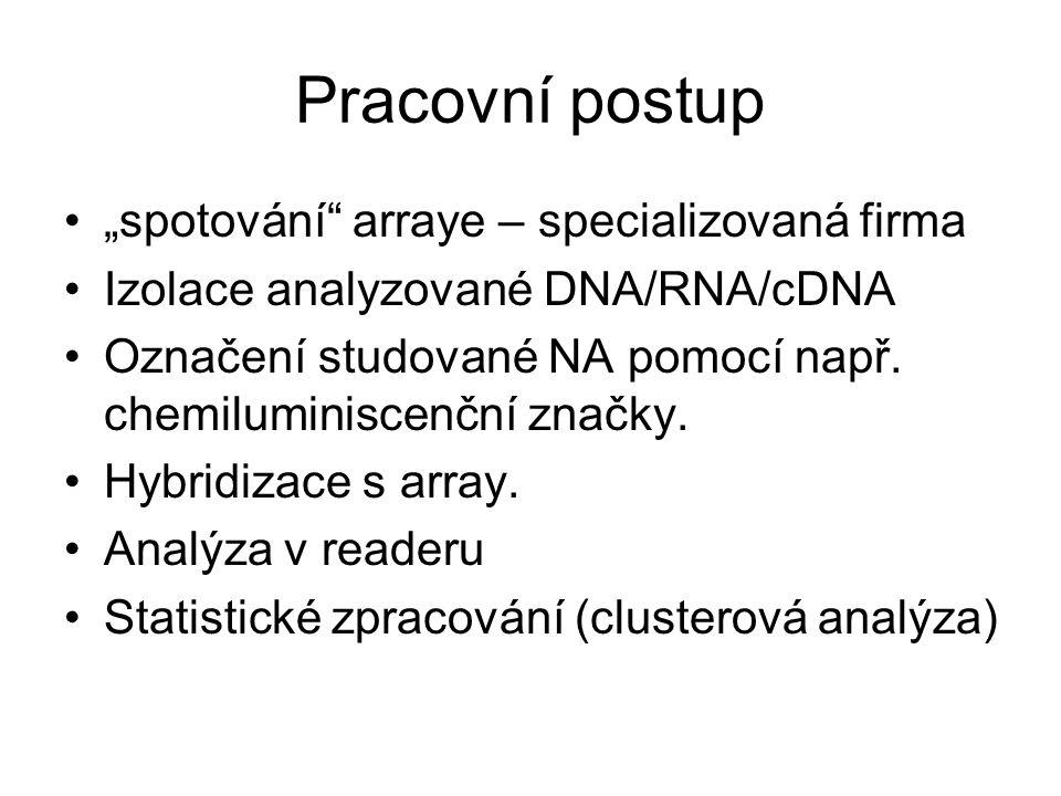 """Pracovní postup """"spotování"""" arraye – specializovaná firma Izolace analyzované DNA/RNA/cDNA Označení studované NA pomocí např. chemiluminiscenční značk"""