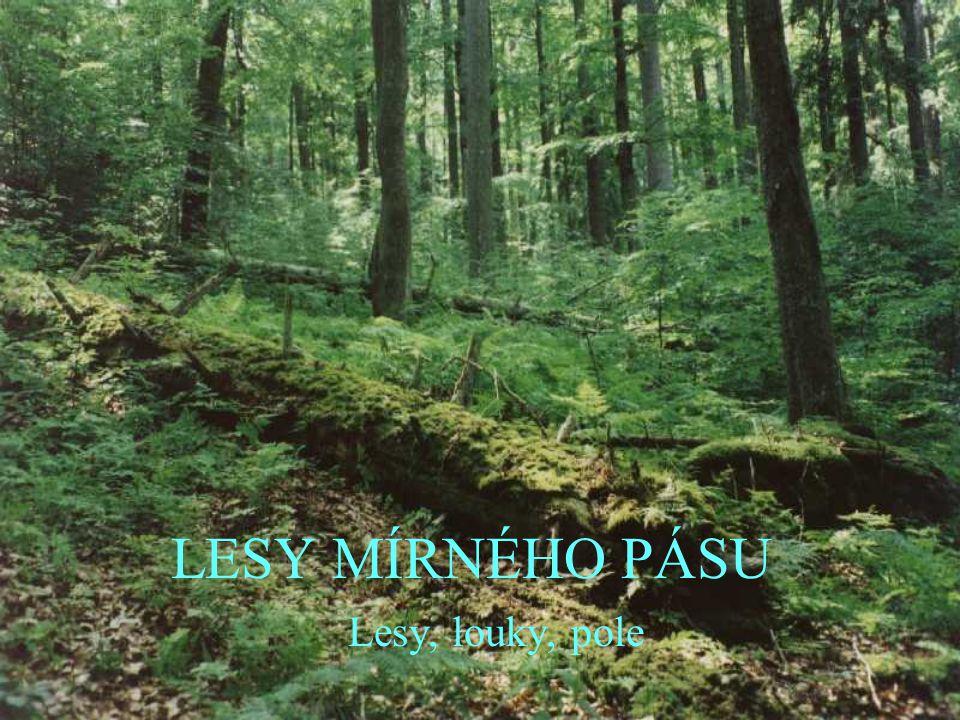 LESY MÍRNÉHO PÁSU Lesy, louky, pole