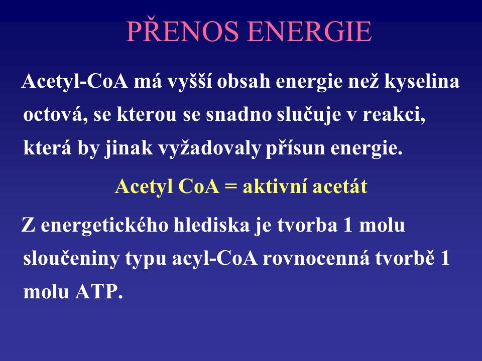 PŘENOS ENERGIE Acetyl-CoA má vyšší obsah energie než kyselina octová, se kterou se snadno slučuje v reakci, která by jinak vyžadovaly přísun energie.