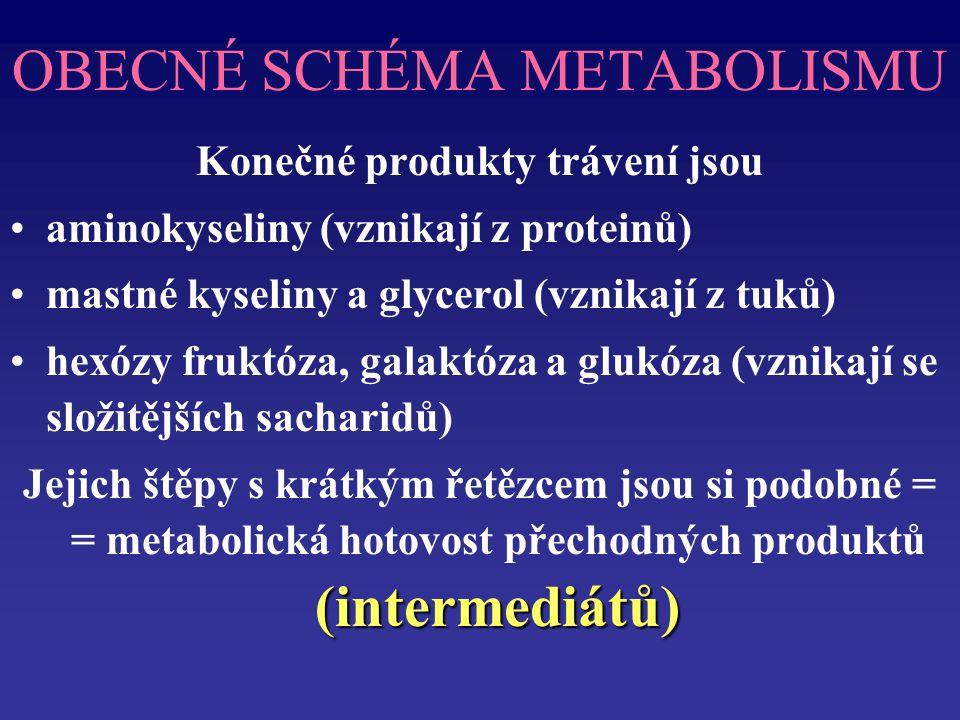 OBECNÉ SCHÉMA METABOLISMU Konečné produkty trávení jsou aminokyseliny (vznikají z proteinů) mastné kyseliny a glycerol (vznikají z tuků) hexózy fruktóza, galaktóza a glukóza (vznikají se složitějších sacharidů) (intermediátů) Jejich štěpy s krátkým řetězcem jsou si podobné = = metabolická hotovost přechodných produktů (intermediátů)