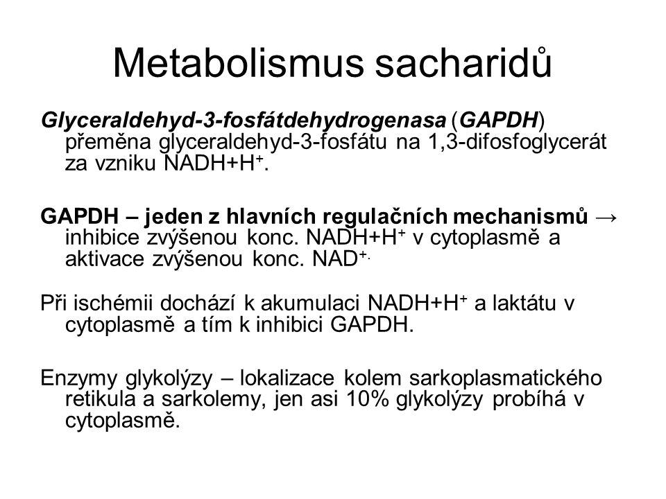 Metabolismus sacharidů Glyceraldehyd-3-fosfátdehydrogenasa (GAPDH) přeměna glyceraldehyd-3-fosfátu na 1,3-difosfoglycerát za vzniku NADH+H +.