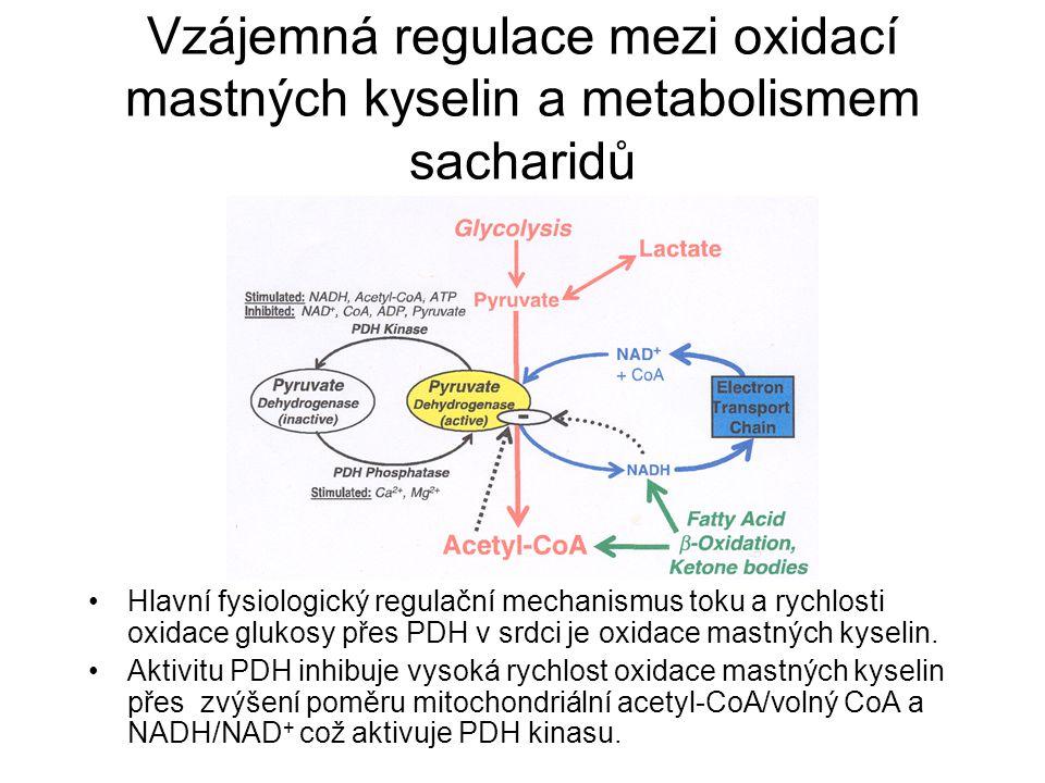 Vzájemná regulace mezi oxidací mastných kyselin a metabolismem sacharidů Hlavní fysiologický regulační mechanismus toku a rychlosti oxidace glukosy přes PDH v srdci je oxidace mastných kyselin.