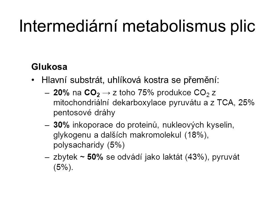 Intermediární metabolismus plic Glukosa Hlavní substrát, uhlíková kostra se přemění: –20% na CO 2 → z toho 75% produkce CO 2 z mitochondriální dekarboxylace pyruvátu a z TCA, 25% pentosové dráhy –30% inkoporace do proteinů, nukleových kyselin, glykogenu a dalších makromolekul (18%), polysacharidy (5%) –zbytek ~ 50% se odvádí jako laktát (43%), pyruvát (5%).