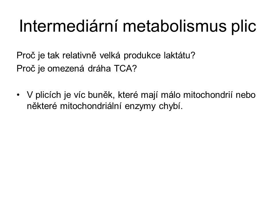 Intermediární metabolismus plic Proč je tak relativně velká produkce laktátu.