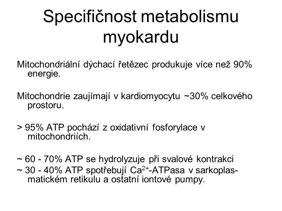Specifičnost metabolismu myokardu Mitochondriální dýchací řetězec produkuje více než 90% energie.
