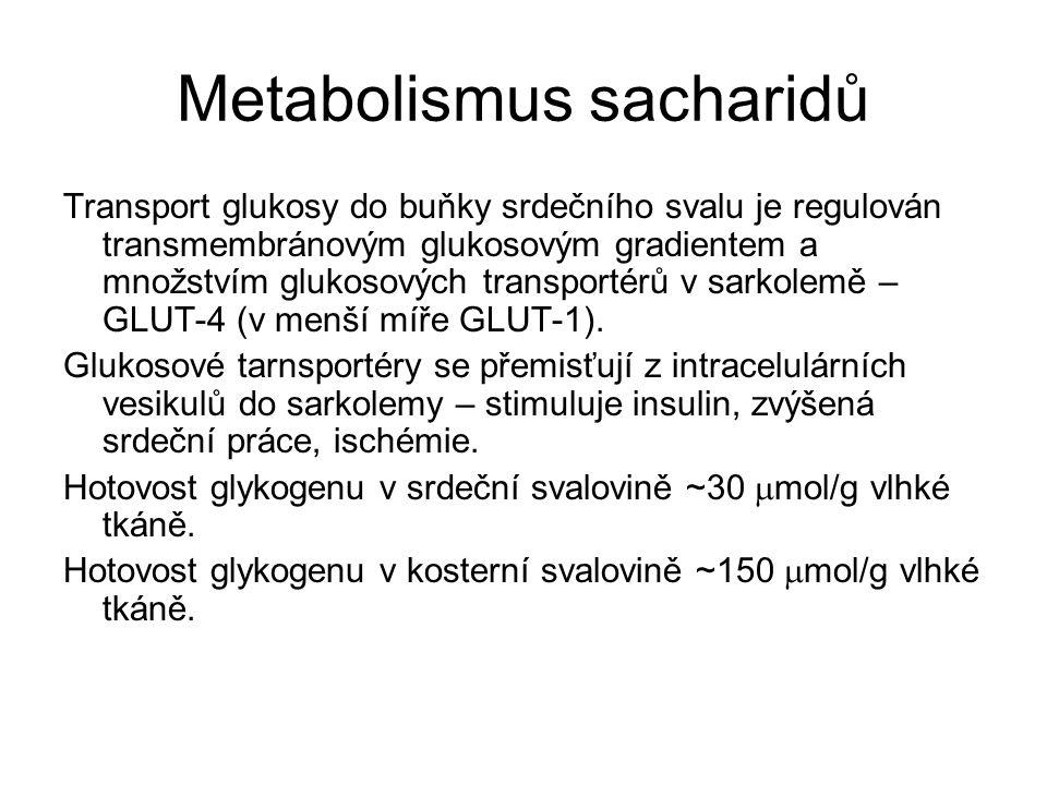 Metabolismus sacharidů Transport glukosy do buňky srdečního svalu je regulován transmembránovým glukosovým gradientem a množstvím glukosových transportérů v sarkolemě – GLUT-4 (v menší míře GLUT-1).