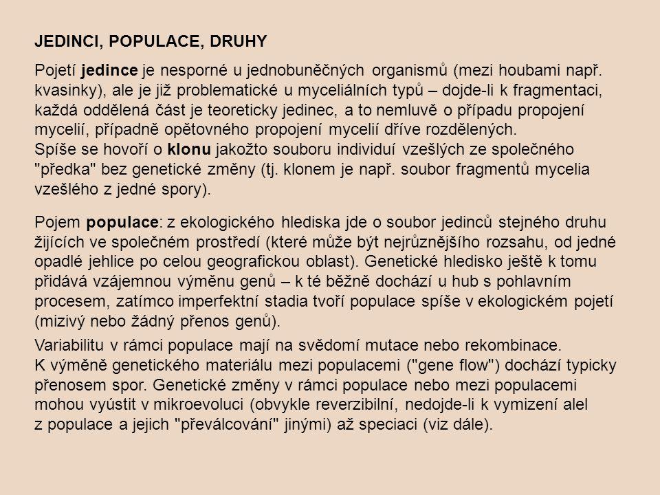 JEDINCI, POPULACE, DRUHY Pojetí jedince je nesporné u jednobuněčných organismů (mezi houbami např. kvasinky), ale je již problematické u myceliálních