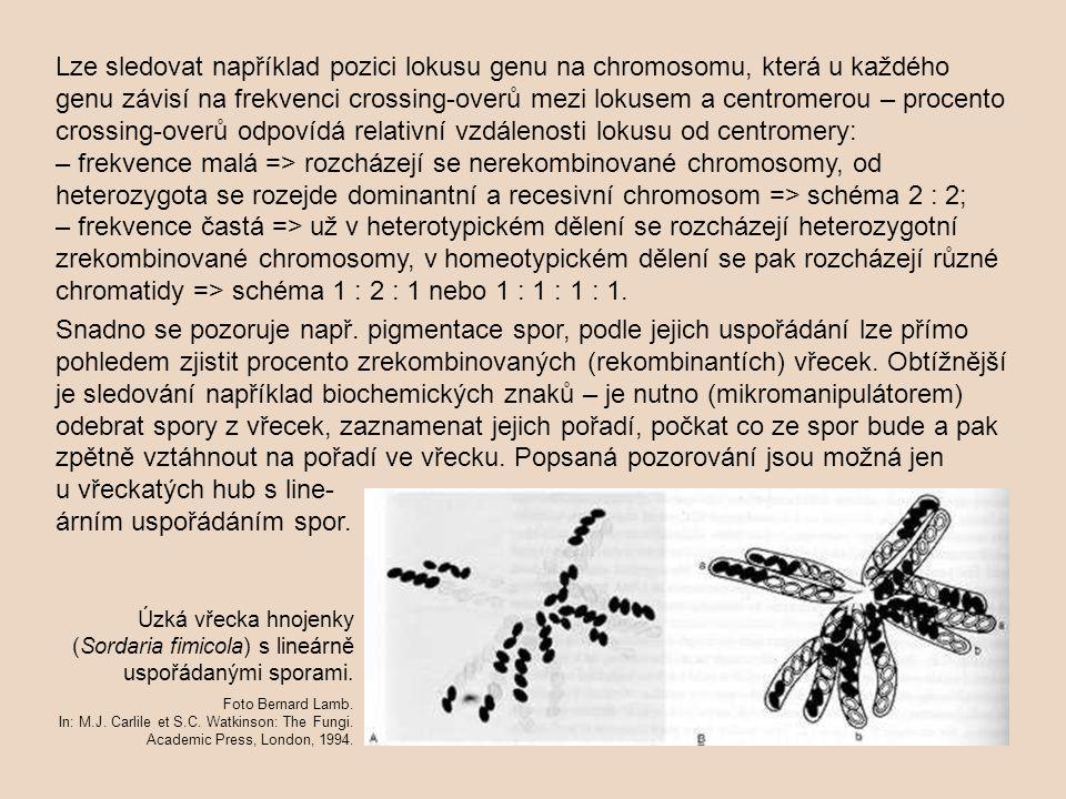 Lze sledovat například pozici lokusu genu na chromosomu, která u každého genu závisí na frekvenci crossing-overů mezi lokusem a centromerou – procento