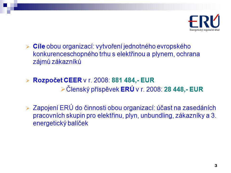 3  Cíle obou organizací: vytvoření jednotného evropského konkurenceschopného trhu s elektřinou a plynem, ochrana zájmů zákazníků  Rozpočet CEER v r.
