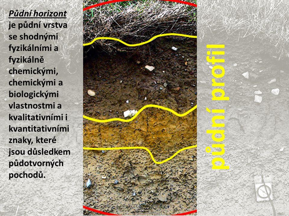 Při posuzování půdního profilu si všímáme hlavně : počtu barevných vrstev - horizontů mocnosti horizontů a jejich sledu celkové mocnosti půdního profilu zrnitosti a vlhkosti půdy humusu, vápenatosti a půdních novotvarů hodnoty pH hloubky zakořenění rostlin (rhizosféry)