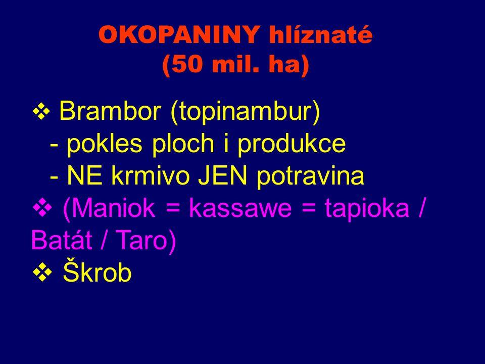  Brambor (topinambur) - pokles ploch i produkce - NE krmivo JEN potravina  (Maniok = kassawe = tapioka / Batát / Taro)  Škrob OKOPANINY hlíznaté (5