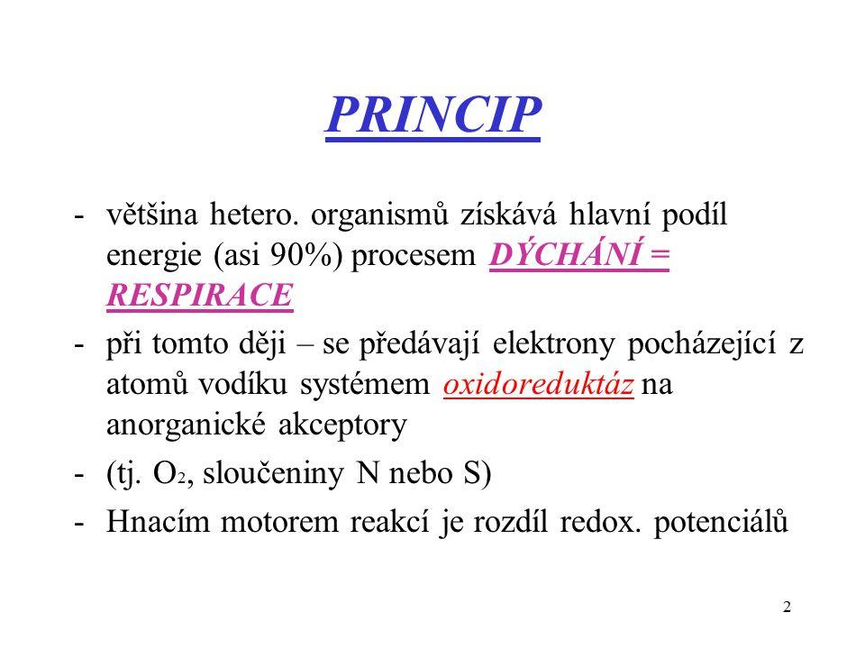 2 PRINCIP -většina hetero.