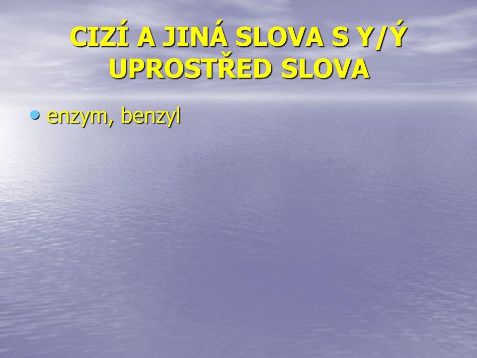 CIZÍ A JINÁ SLOVA S Y/Ý UPROSTŘED SLOVA enzym, benzyl