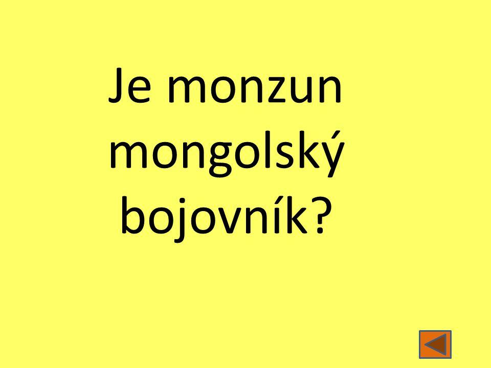 Je monzun mongolský bojovník?