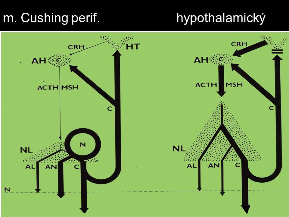 m. Cushing perif.hypothalamický