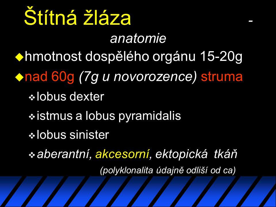 Štítná žláza - anatomie u hmotnost dospělého orgánu 15-20g u nad 60g (7g u novorozence) struma  lobus dexter  istmus a lobus pyramidalis  lobus sinister  aberantní, akcesorní, ektopická tkáň (polyklonalita údajně odliší od ca)