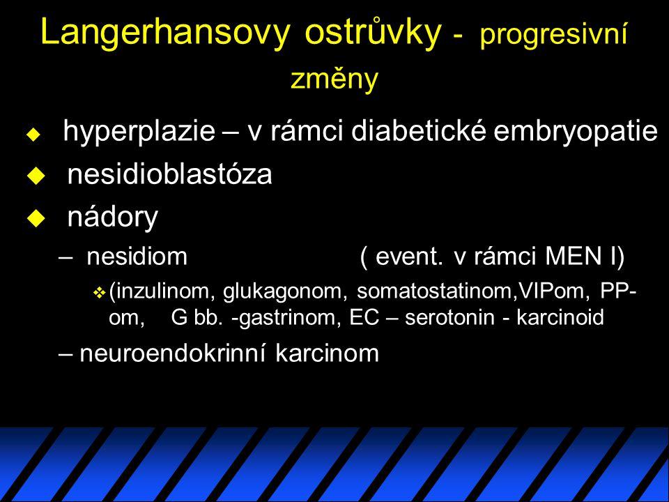 Langerhansovy ostrůvky - progresivní změny u hyperplazie – v rámci diabetické embryopatie u nesidioblastóza u nádory – nesidiom ( event.