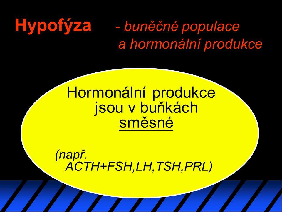 Hypofýza - buněčné populace a hormonální produkce Hormonální produkce jsou v buňkách směsné (např.