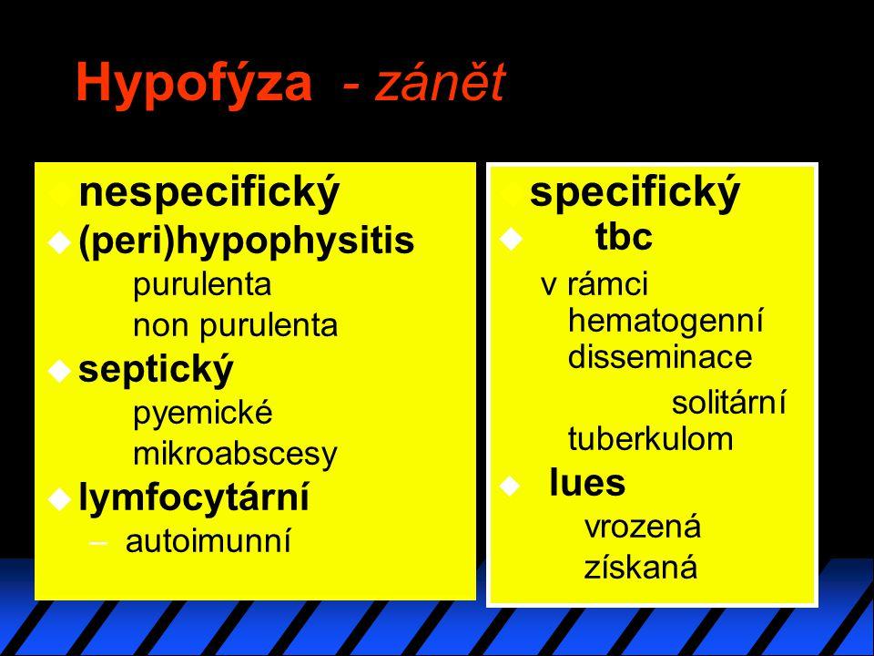 Hypofýza - zánět u nespecifický u (peri)hypophysitis purulenta non purulenta u septický pyemické mikroabscesy u lymfocytární – autoimunní u specifický u tbc v rámci hematogenní disseminace solitární tuberkulom u lues vrozená získaná