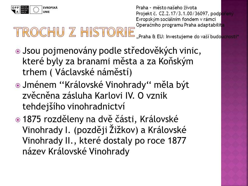  Jsou pojmenovány podle středověkých vinic, které byly za branami města a za Koňským trhem ( Václavské náměstí)  Jménem ''Královské Vinohrady'' měla