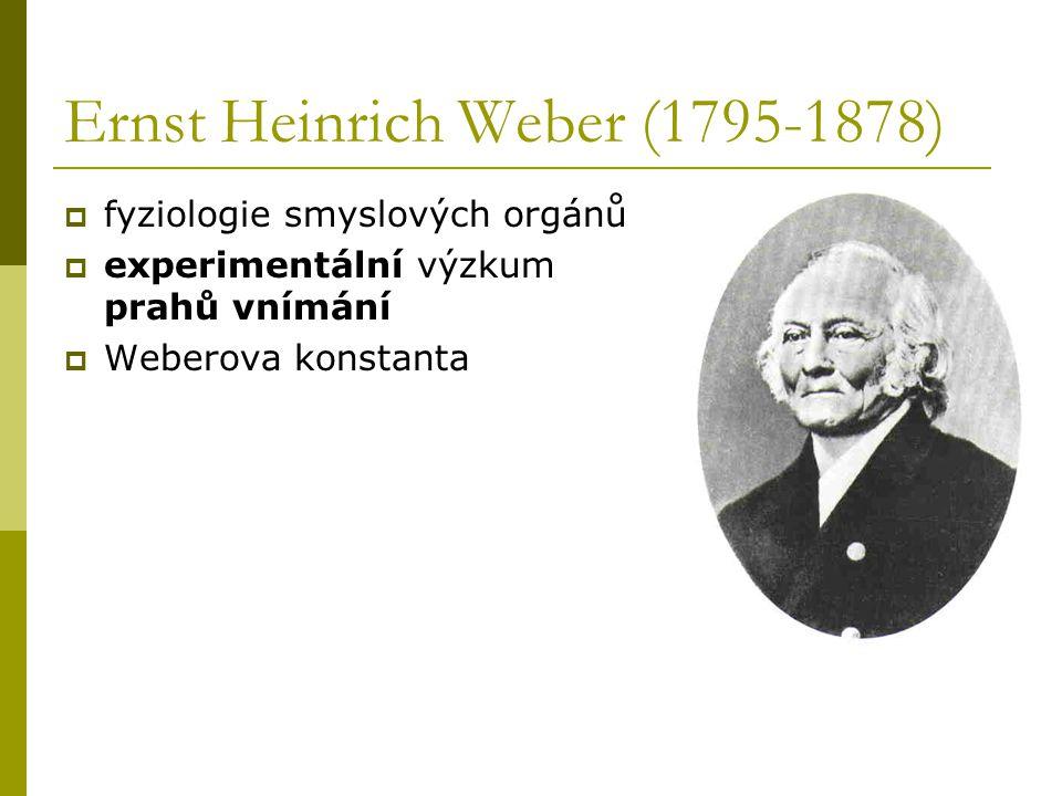 Gustav Theodor Fechner (1801-1887)  zakladatel nové disciplíny – psychofyziky  rozpracoval Weberův zákon  ukázal, jak je možno měřit duševní procesy – vliv na Wundta a jeho laboratoř