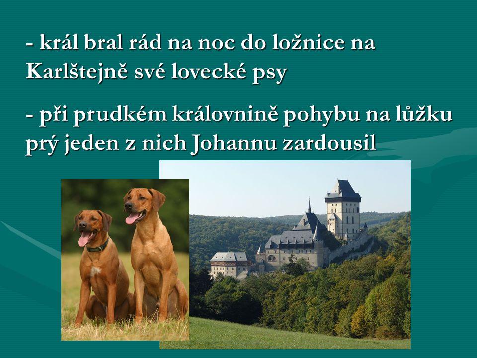 - král bral rád na noc do ložnice na Karlštejně své lovecké psy - při prudkém královnině pohybu na lůžku prý jeden z nich Johannu zardousil