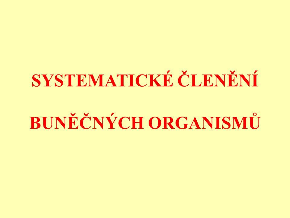 Eukaryota a Archaea jsou navzájem více příbuzní, než k bakteriím (Cavalier-Smithova theorie bakteriální evoluce).