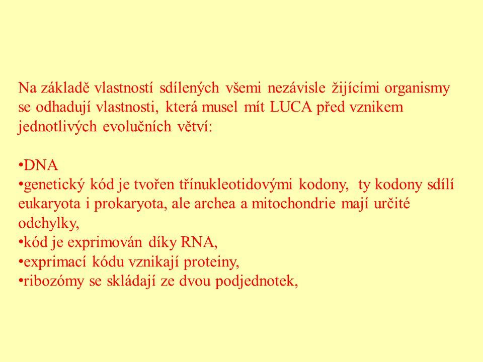 Na základě vlastností sdílených všemi nezávisle žijícími organismy se odhadují vlastnosti, která musel mít LUCA před vznikem jednotlivých evolučních v
