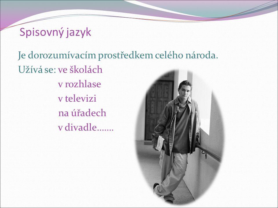 Spisovný jazyk Je stejný na celém území.Je jednotícím poutem všech Čechů.