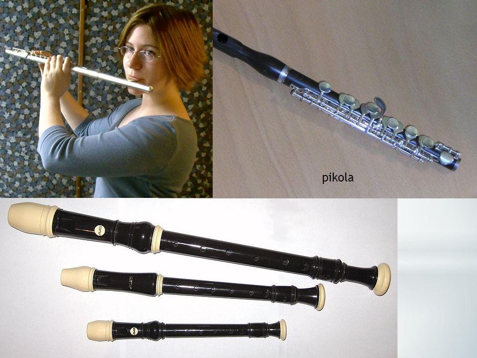  flétna zobcová – flétny se vyvinuly z píšťaly, mají kořeny v nejstarších kulturách  flétna příčná – barokní příčná flétna byla ještě dřevěná, bez m