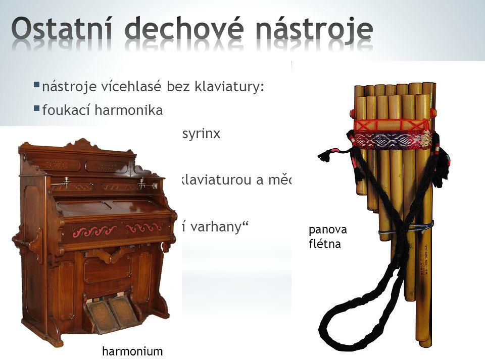  nástroje vícehlasé bez klaviatury:  foukací harmonika  Panova flétna neboli syrinx  nástroje vícehlasé s klaviaturou a měchem:  varhany  harmon