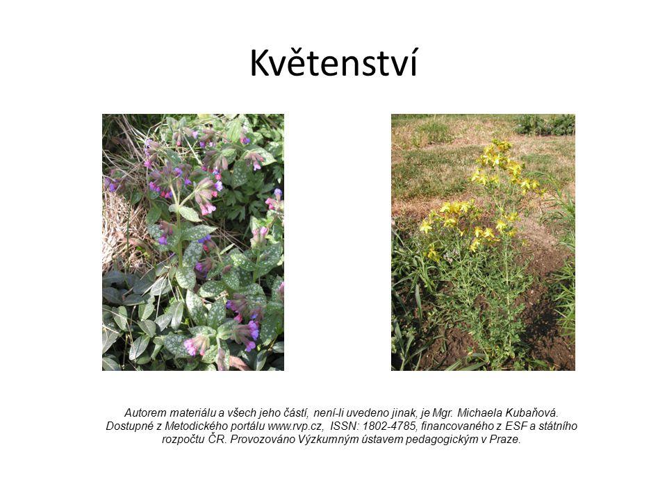 Květenství Autorem materiálu a všech jeho částí, není-li uvedeno jinak, je Mgr. Michaela Kubaňová. Dostupné z Metodického portálu www.rvp.cz, ISSN: 18
