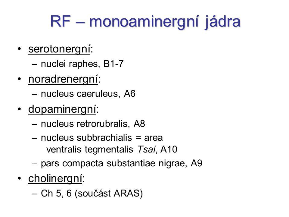 RF – monoaminergní jádra serotonergní: –nuclei raphes, B1-7 noradrenergní: –nucleus caeruleus, A6 dopaminergní: –nucleus retrorubralis, A8 –nucleus su