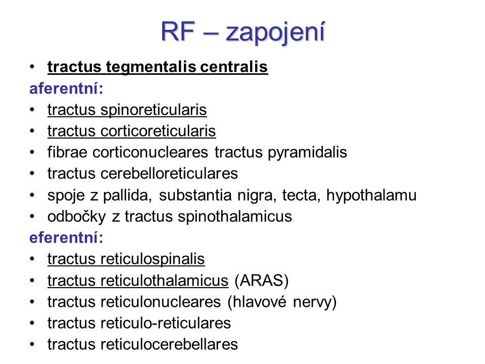 RF – zapojení tractus tegmentalis centralis aferentní: tractus spinoreticularis tractus corticoreticularis fibrae corticonucleares tractus pyramidalis