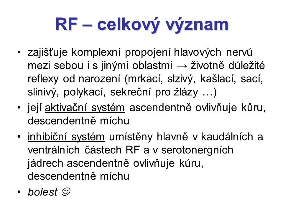 RF – celkový význam zajišťuje komplexní propojení hlavových nervů mezi sebou i s jinými oblastmi → životně důležité reflexy od narození (mrkací, slziv