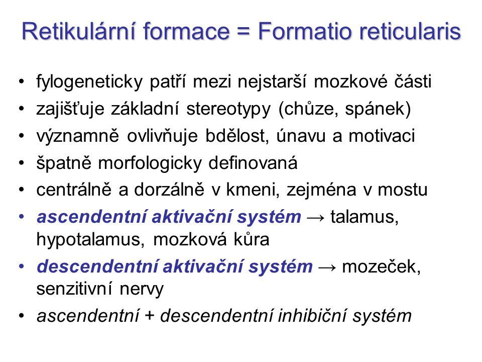 Retikulární formace = Formatio reticularis fylogeneticky patří mezi nejstarší mozkové části zajišťuje základní stereotypy (chůze, spánek) významně ovl