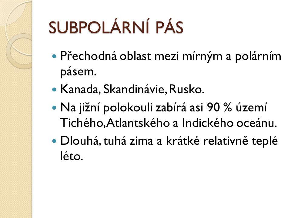 SUBPOLÁRNÍ PÁS Přechodná oblast mezi mírným a polárním pásem.