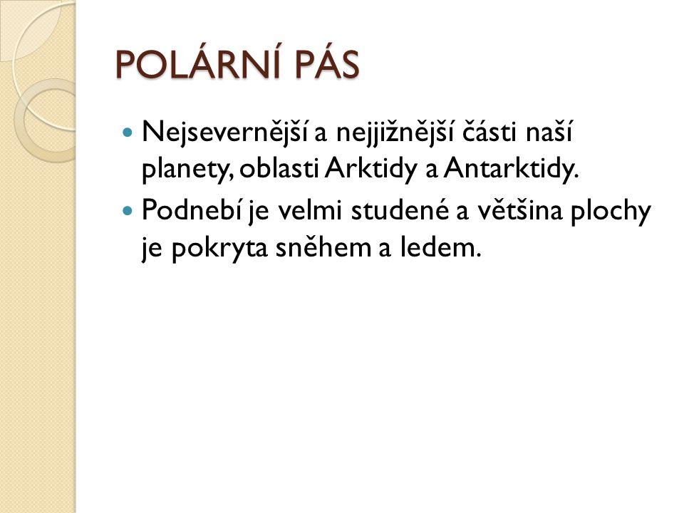 POLÁRNÍ PÁS Nejsevernější a nejjižnější části naší planety, oblasti Arktidy a Antarktidy.