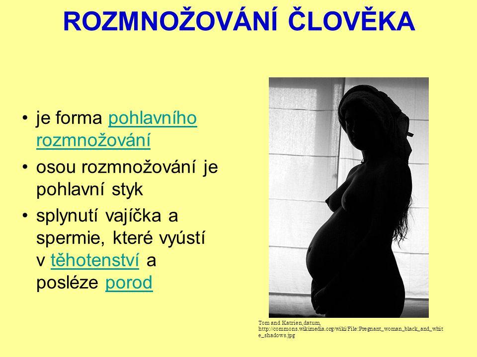 ROZMNOŽOVÁNÍ ČLOVĚKA je forma pohlavního rozmnožovánípohlavního rozmnožování osou rozmnožování je pohlavní styk splynutí vajíčka a spermie, které vyústí v těhotenství a posléze porodtěhotenstvíporod Tom and Katrien,datum, http://commons.wikimedia.org/wiki/File:Pregnant_woman_black_and_whit e_shadows.jpg