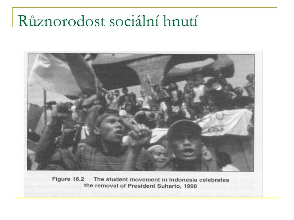 Různorodost sociální hnutí