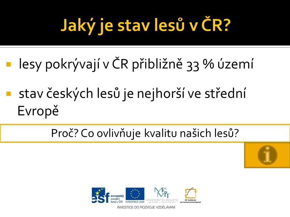  lesy pokrývají v ČR přibližně 33 % území  stav českých lesů je nejhorší ve střední Evropě Proč.